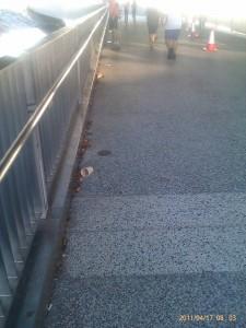 little litter along the race route